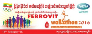 Ferrovit-300x111
